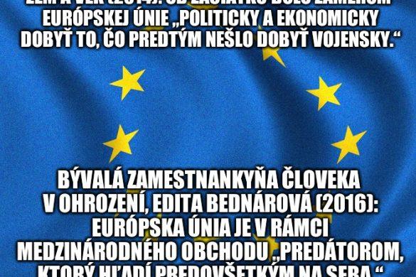 Vzdeláva Zem&Vek slovenskú občiansku spoločnosť?