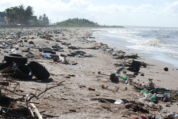 """Svetový fond na ochranu prírody varuje: """"Plastového odpadu v  prírode pribúda!"""""""