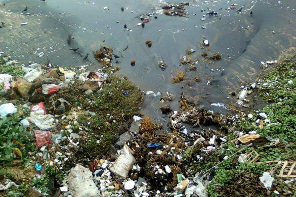 Podľa OSN až jedna štvrtina predčasných úmrtí vo svete je spôsobená následkami znečistenej prírody